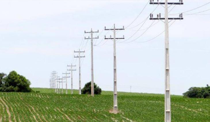 Celesc Rural já instalou mais de 500 quilômetros de cabos protegidos no Alto Vale