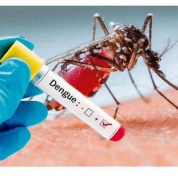 Total de focos de Dengue deste ano em Rio do Sul, já supera todos os meses de 2019