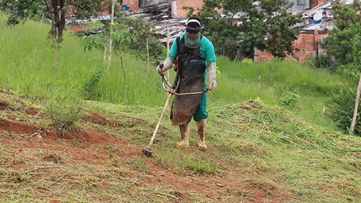 Quase 190 proprietários são notificados por não limpar terrenos baldios em Rio do Sul.