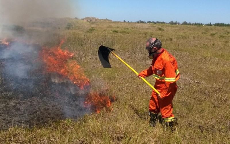 Estiagem aumenta registros de incêndio em vegetação na região