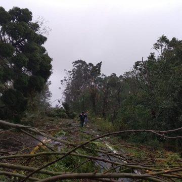 Estado decreta situação de calamidade pública após ser atingido por ciclone