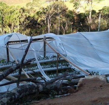Por causa do ciclone registrado em junho, Epagri estima que perdas na área rural do Alto Vale chegam a R$ 33 milhões