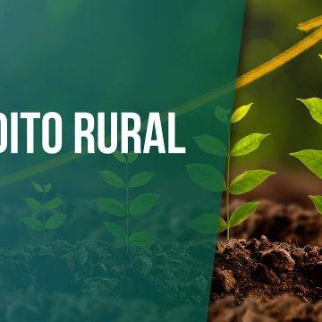 Financiamentos de crédito rural para agricultores prejudicados pela pandemia terão prorrogação do vencimento