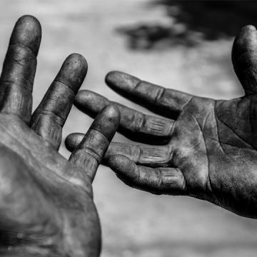 Ituporanga registra mais uma denúncia de trabalho escravo no plantio de cebola