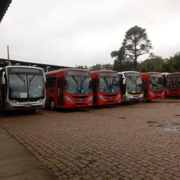 Com solicitação de usuários, Ônibus Circular amplia oferta de linhas de transporte público