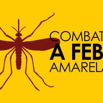 Aurora e Vitor Meireles confirmam casos de macacos mortes por Febre Amarela