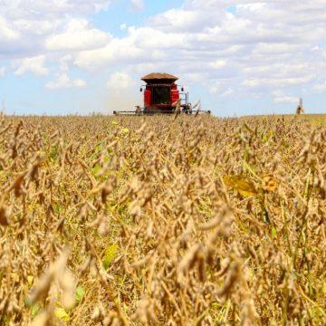 Entidades acompanham impacto da alta do arroz na região