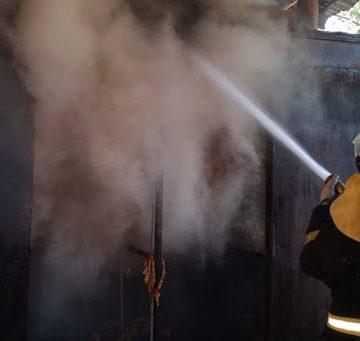 Falta de manutenção em casas e estufas também amplia o risco de incidentes