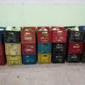 Secretaria de educação de RSL fará mais uma entrega de kits de alimentação escolar