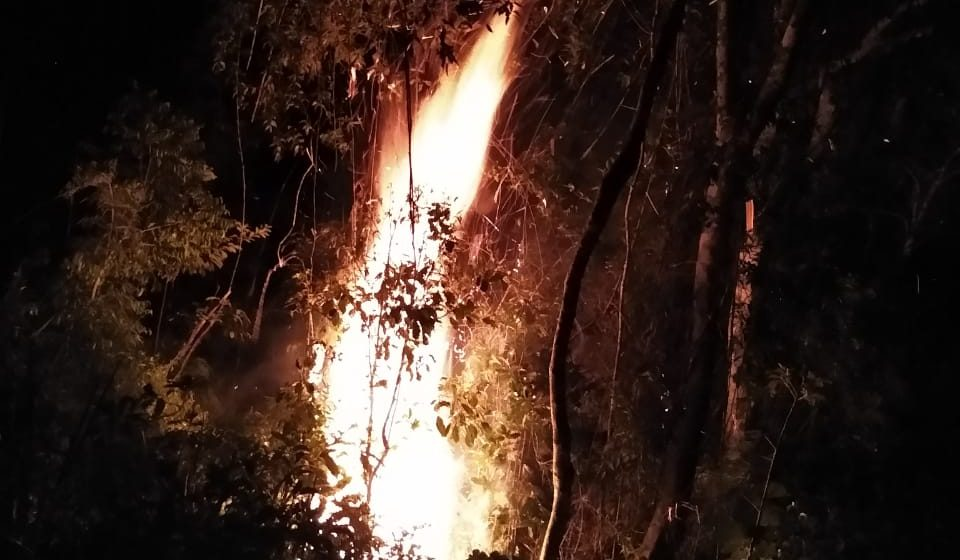 No último mês, 15º Batalhão de Bombeiros Militar de Rio do Sul registrou 35 incêndios florestais