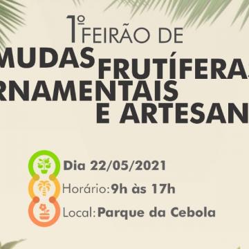 Ituporanga realizará o primeiro Feirão de Mudas Frutíferas e Ornamentais e de Artesanato