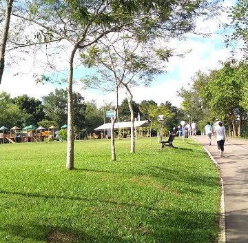 Aulão de Capoeira ocorre no domingo no Parque Harry Hobus