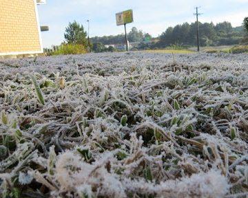 Frio intenso pode causar prejuízos na agricultura, principalmente para os fumicultores
