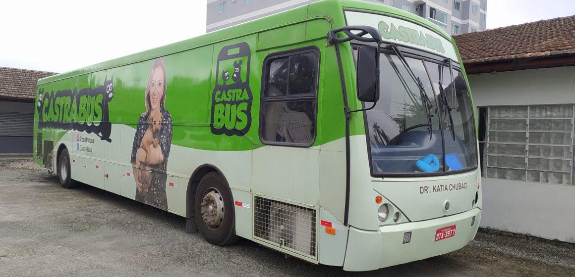Segue, até quarta-feira, mutirão de castração de animais, em Rio do Sul