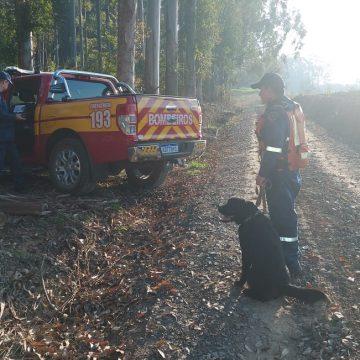 Por falta de indícios, Corpo de bombeiros militar suspende buscas por idoso desaparecido