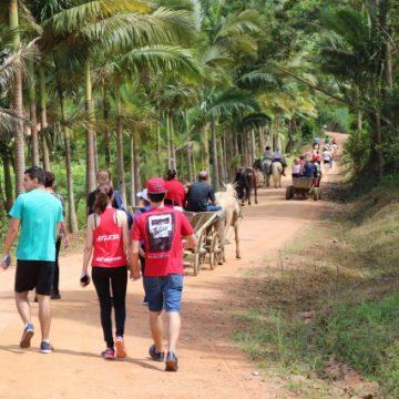 Ibirama realiza 16ª edição do Wandertag e 3ª Caminhada Internacional na Natureza no domingo