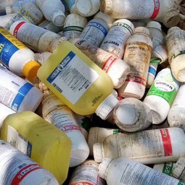 Mais de 10 mil quilos de embalagens são entregues por agricultores de Ituporanga durante campanha