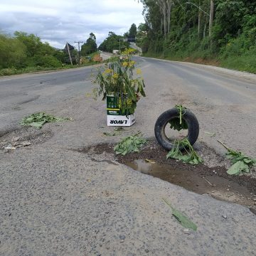 Morador sinaliza buracos, na BR-470, para alertar motoristas sobre risco de acidentes e danos