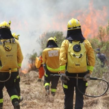Bombeiro militar de Rio do Sul participa de capacitação em operações de incêndio florestal e fará parte do cadastro de efetivo da Força Nacional