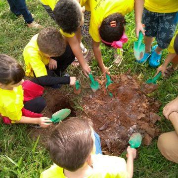 Projeto do município vai tornar escolas sustentáveis